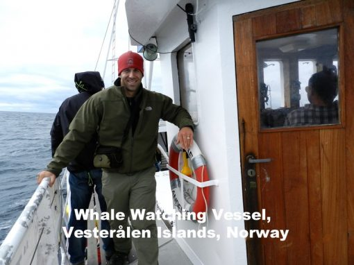Whale Watching Vessel